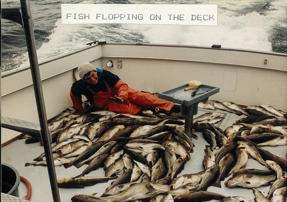 RI Sportfishing Charter; Cod is an excellent eating bottom fish